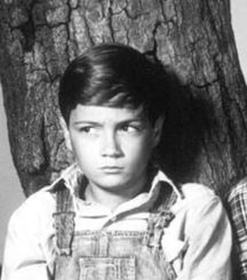 to kill a mockingbird scout finch essay Get free homework help on harper lee's to kill a mockingbird: told through the eyes of scout finch full glossary for to kill a mockingbird essay questions.